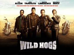 http://sodabarsystems.com/wp-content/uploads/2019/02/Home_Wild_Hogs.jpg